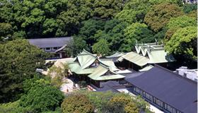 兵庫県指定の天然記念物 えびすの杜